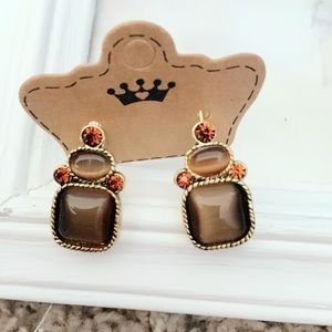 Brown and Gold Tone Statement Earrings